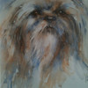 Shihtzu - by Heather Withers